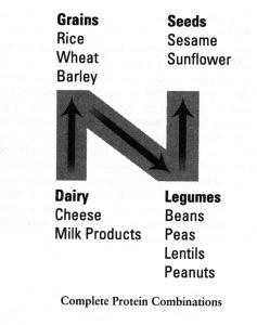 Nutrition N