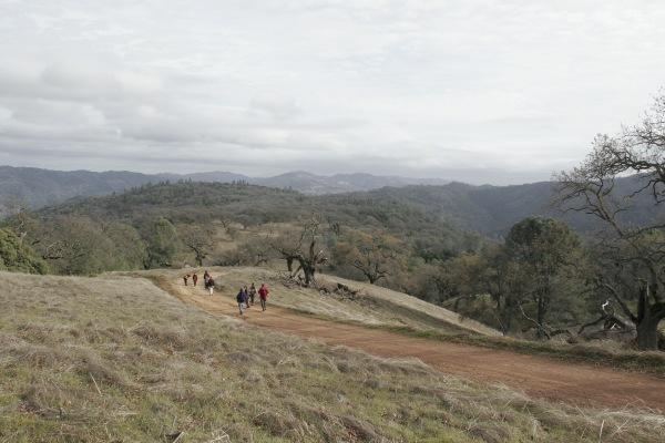 Backpacking manzanita ridge